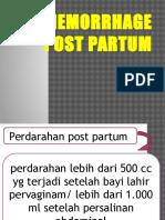 Hemorrhagia Post Partum
