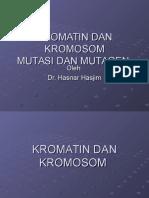 Kromatin Dan Kromosom