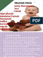 Fetus Ss