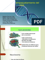 EmpaquetamientoDNA .pptx