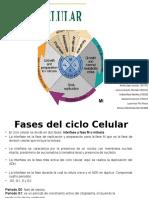 Ciclo-celular.pptx