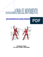 Anatomia para el movimiento