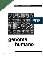Estructura Y Complejidad Del Genoma Humano