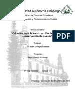 Artículo_Piedritas_final.docx