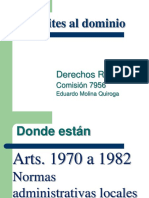 Limites al dominio.pdf