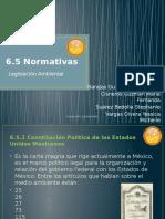 6.5 Normativas Ambientales