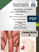 Chancroid e