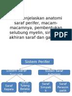 saraf