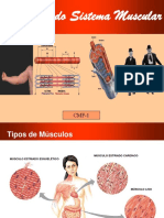 fisiologia sistema muscular.pdf