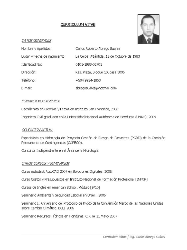 CV Carlos Abrego 2015