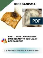 1 1pengelasanmikroorganisma