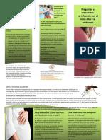 Preguntas Respuestas Infeccion Zika Embarazo