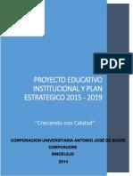 Pei Plan Estrategico 2015 - 2019