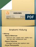 HIDUNG REVISI