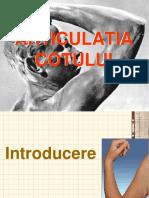 Cotul.pdf