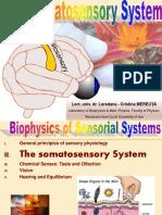 cap II_curs  5 _6_ Somatosensory system_2014_2015_.pdf