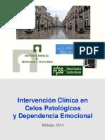 2014 Seminario Celos Patológicos y Dependencia