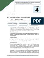 Capitulo IV Formulacion