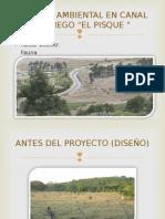 Impacto Ambiental en Canal de Riego El Pisque