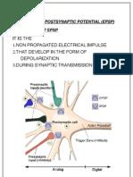 EPSP AND IPSP