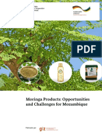 GIZ - Moringa Products- Opportunities and Challenges Mozambique