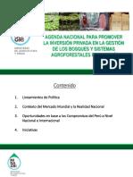 Presentación Panel Fabiola Muñoz Dodero SERFOR
