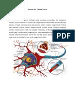 Anatomi Dan Fisiologi Neuron