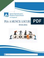 Piata muncii _09.02.16 (1)