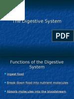 Divestive system