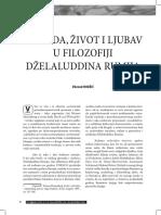293804727-Dževad-Hodžić-Priroda-život-i-ljubav-u-filozofiji-Dželaluddina-Rumija.pdf