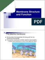 membrain strukture