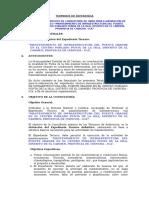 4. tdr exp. tecnico Puente Grande.doc