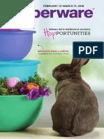 Mid February 2016 Brochure US