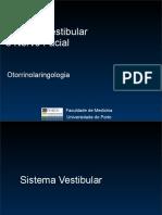 Aula 4- Vertigem -Dr Pedro Marques