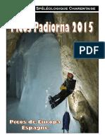 Rapport Picos 2015.pdf