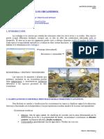 El Medio Ambiente y Los Organismos