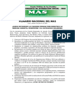 Plenario Nacional Del Mas Acuerdos