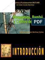 La Quimica Del Bambu