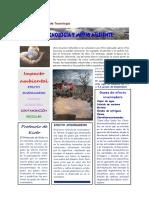 revista_tecnolg_y_medio_ambiente_15-16.pdf