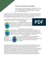 El Efecto de Las Drogas en El Cerebro.