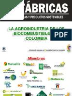 La Agroindustria de Los Biocombustibles en Colombia