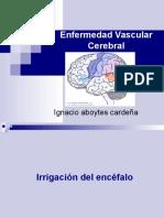 Enfermedad Vascular Cerebral, MIP