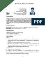Cv Sandro Angulo