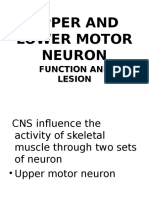 Upper and Lower Motor Neuron