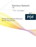 Netact for Juniper Application Note