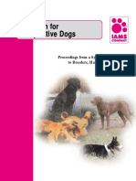 Nutrition for Competitive Dogs