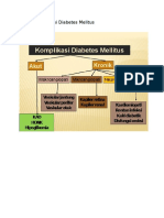 Bagan Komplikasi Diabetes Melitus