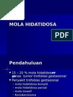 Mola Hidatidosa Iz