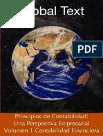 Principios de Contabilidad Vol1