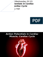 1394-08-13 Action Potentials in Cardiac Muscle, Cardiac Cycle